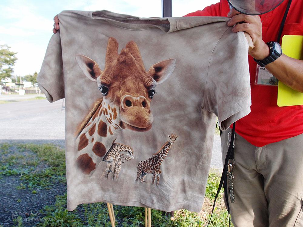 2016.9.25 岩手サファリパーク☆キリンのコウタとミナミ【Giraffe】_f0250322_2123281.jpg