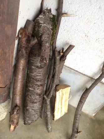 生木から創る木工体験!_f0101226_22514069.jpg