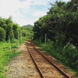 徳島県フェス!!_f0326862_16545070.jpg