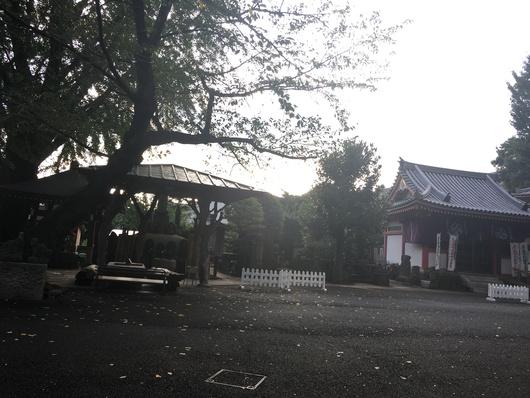 中野坂上お寺ヨガはじまります_f0187875_15175187.jpg