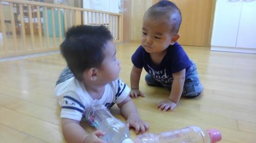 保育園のあかちゃん_c0197584_1653361.jpg