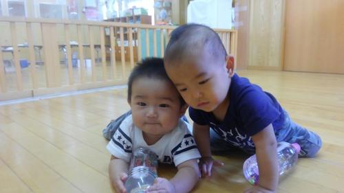 保育園のあかちゃん_c0197584_16544786.jpg