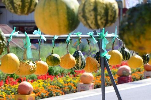 戸田かぼちゃ祭 岩手県九戸村戸田地区_c0299631_23155865.jpg