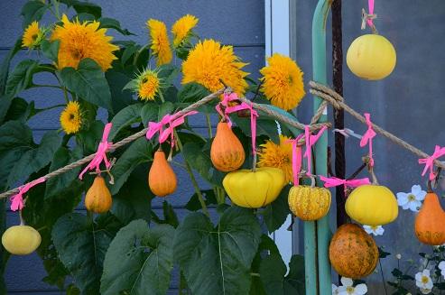 戸田かぼちゃ祭 岩手県九戸村戸田地区_c0299631_23195299.jpg
