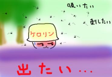 b0130243_10514424.jpg