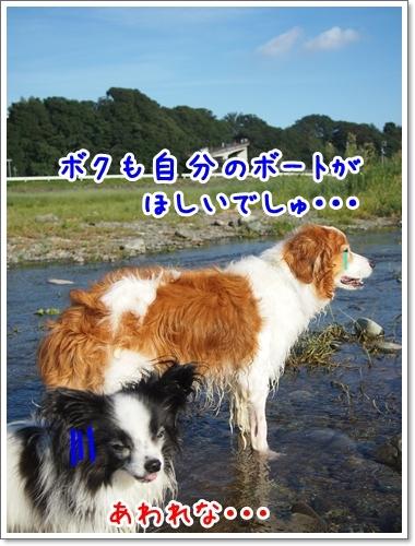 d0013149_00441550.jpg