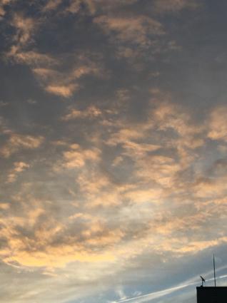雨の日はテラスで事務仕事_a0163160_11202911.jpg