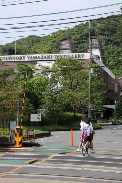 藤田八束の鉄道写真@特急「はるか」がサントリー山崎工場の前を通過・・・白いドレスの装いの貴婦人の風格_d0181492_21262351.jpg