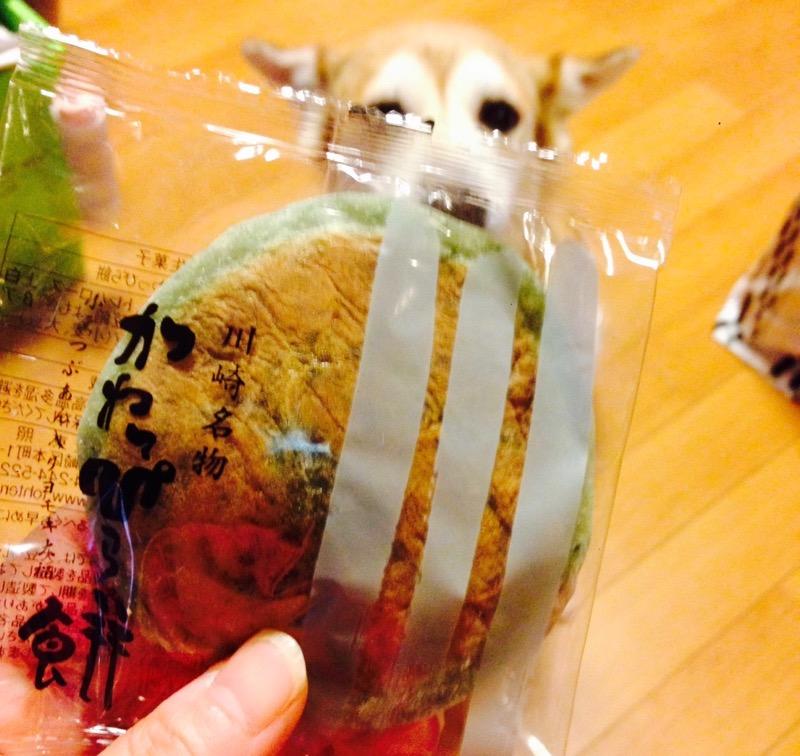 神奈川県、川崎のお菓子_f0232994_1535879.jpg