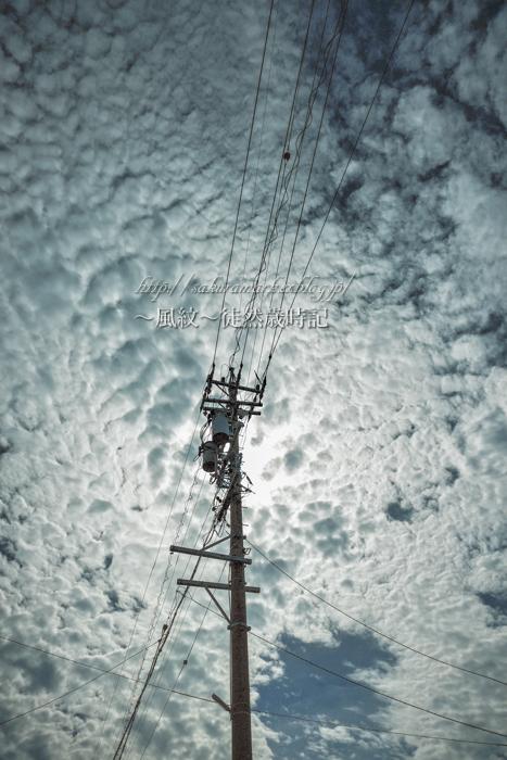 台風前の高積雲。_f0235723_21373470.jpg
