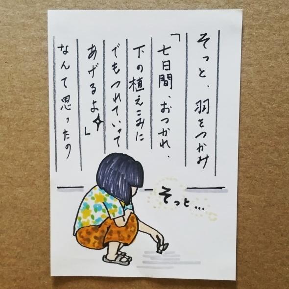 2016夏のキャンペーン結果発表②ギフト券1000円当選者!_f0357923_13230187.jpg