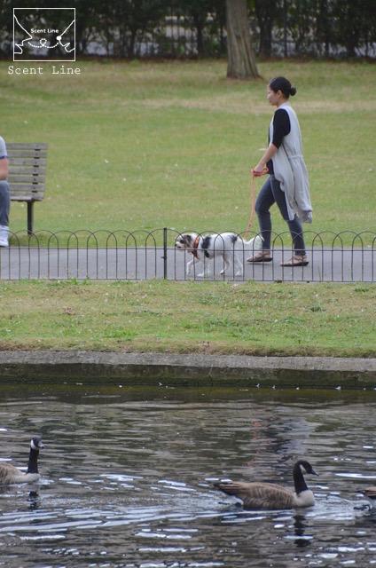 2度目のイギリス旅レポート その2 (ロンドンで犬と散歩)_c0099133_1340292.jpg