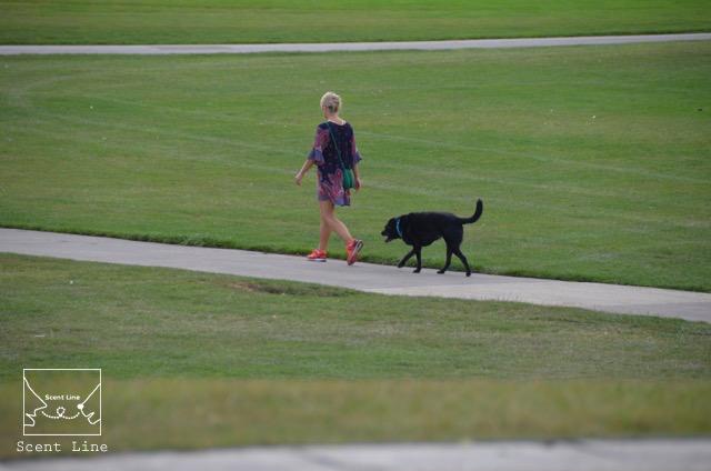2度目のイギリス旅レポート その2 (ロンドンで犬と散歩)_c0099133_1415489.jpg