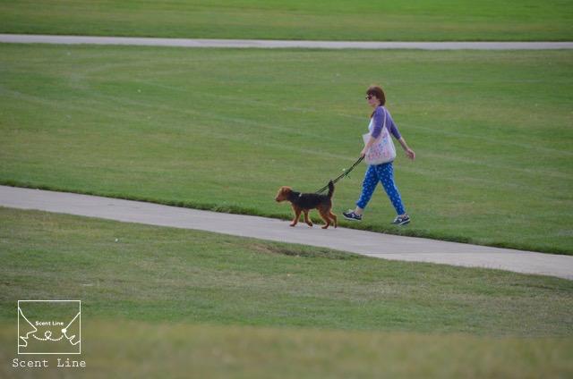 2度目のイギリス旅レポート その2 (ロンドンで犬と散歩)_c0099133_1416851.jpg