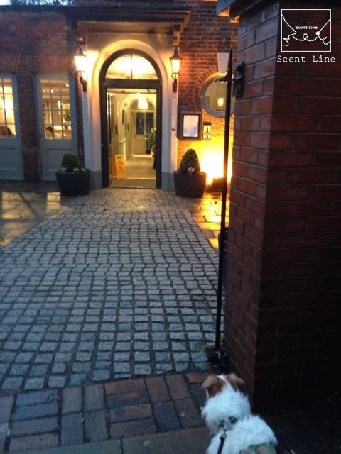2度目のイギリス旅レポート その2 (ロンドンで犬と散歩)_c0099133_322759.jpg