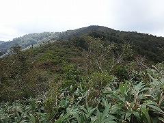薮山入門三周ヶ岳1292mと三国岳1209m_e0064783_22421742.jpg