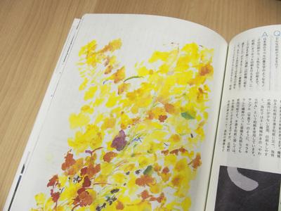 『デザインのひきだし29』和紙特集はこんな内容だ!_c0207090_1748385.jpg