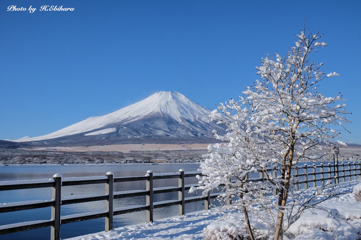 やっぱり富士は美しい_e0070307_22275735.jpg