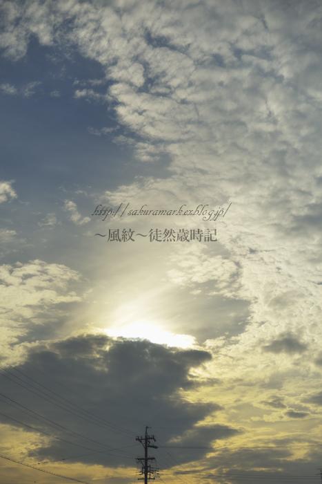 黄昏高積雲。_f0235723_1856431.jpg