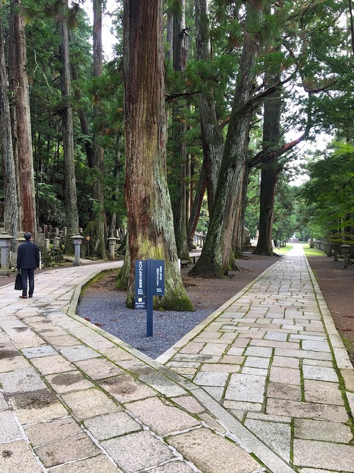 日本の旅、その1/ Japan Trip 1_e0310424_17333798.jpg