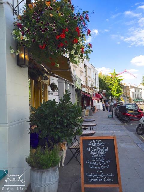 2度目のイギリス旅レポート その2 (ロンドンで犬と散歩)_c0099133_13392011.jpg