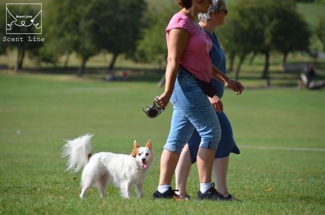 2度目のイギリス旅レポート その2 (ロンドンで犬と散歩)_c0099133_8122435.jpg