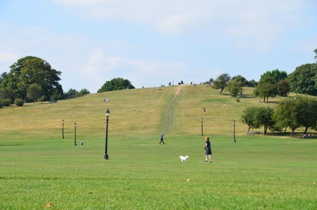 2度目のイギリス旅レポート その2 (ロンドンで犬と散歩)_c0099133_8212120.jpg