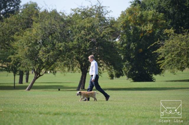 2度目のイギリス旅レポート その2 (ロンドンで犬と散歩)_c0099133_8224297.jpg