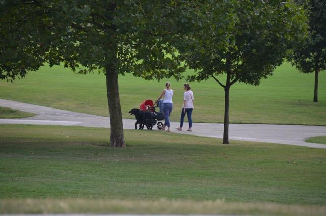 2度目のイギリス旅レポート その2 (ロンドンで犬と散歩)_c0099133_826763.jpg
