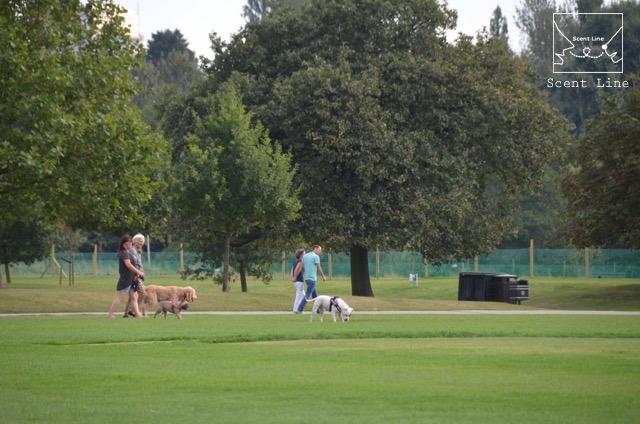 2度目のイギリス旅レポート その2 (ロンドンで犬と散歩)_c0099133_8274157.jpg