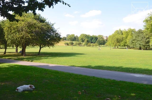 2度目のイギリス旅レポート その2 (ロンドンで犬と散歩)_c0099133_861566.jpg