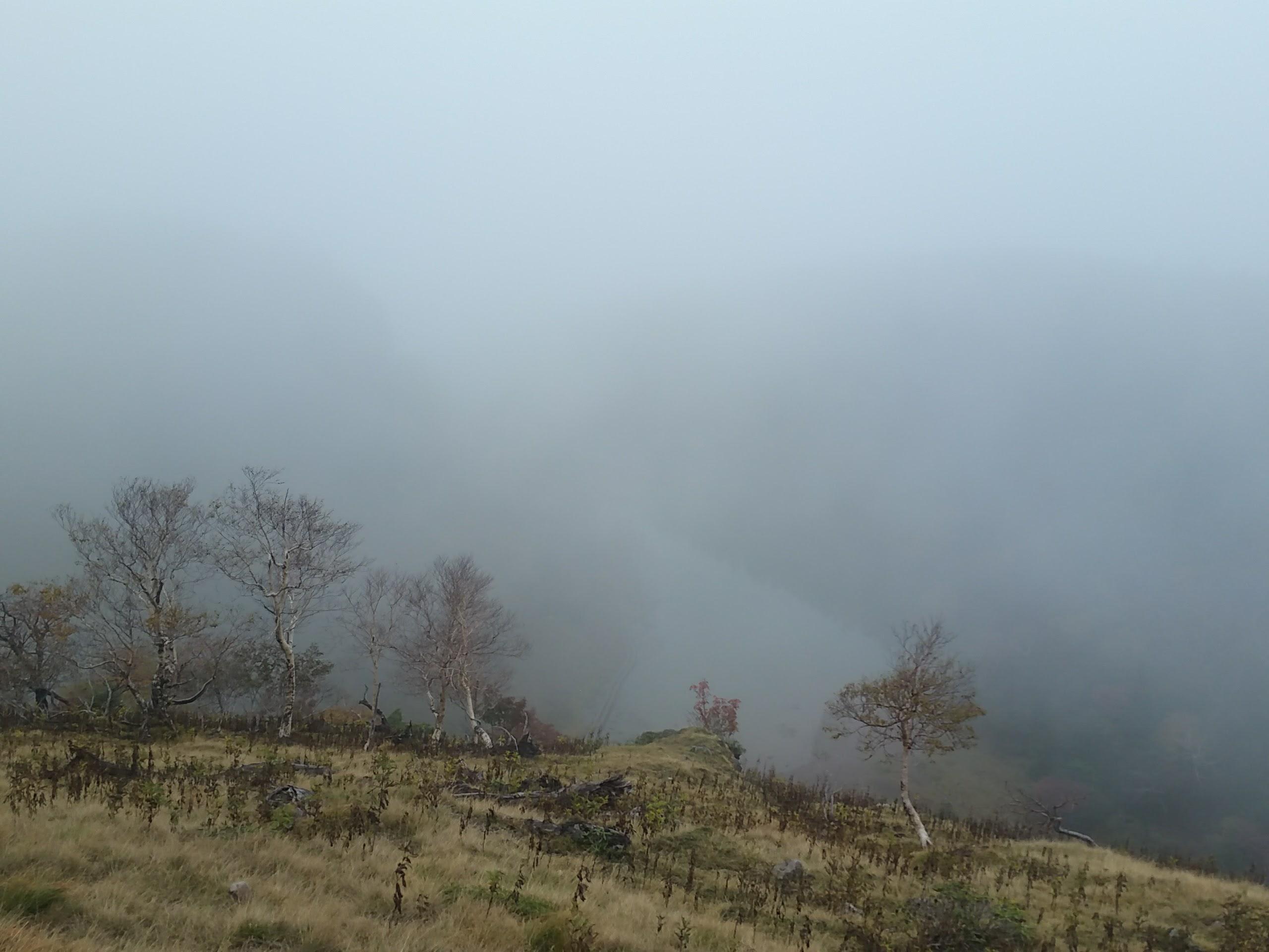 日光白根山を登ってきました。_e0070448_940591.jpg
