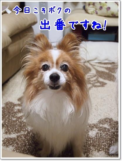 d0013149_00150707.jpg