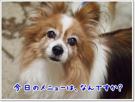 d0013149_00242109.jpg