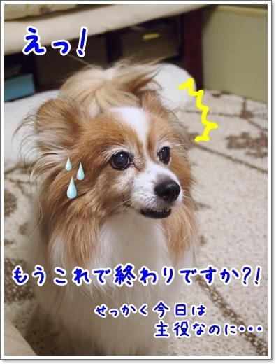 d0013149_00394221.jpg