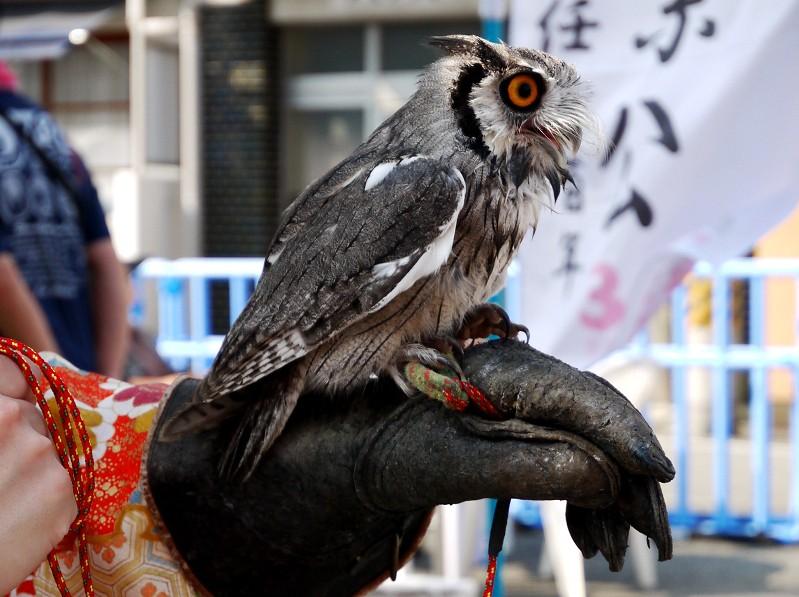 和歌山城下まちなか河岸 (かし) _b0093754_22512659.jpg