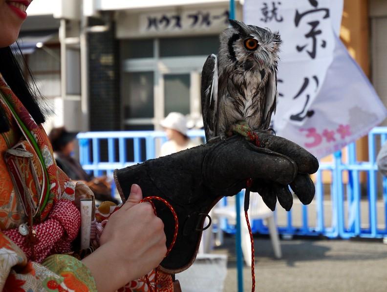 和歌山城下まちなか河岸 (かし) _b0093754_2251623.jpg