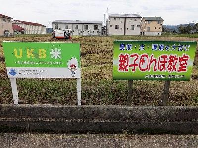 親子田んぼ教室   基幹病院稲刈り   つくしんぼ田舎体験_b0092684_1503482.jpg