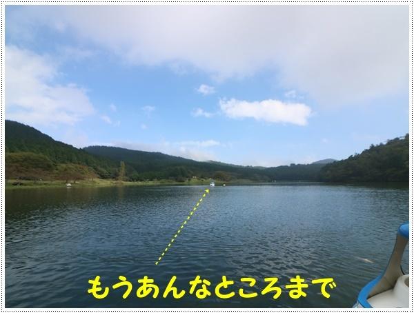 b0175688_00084810.jpg
