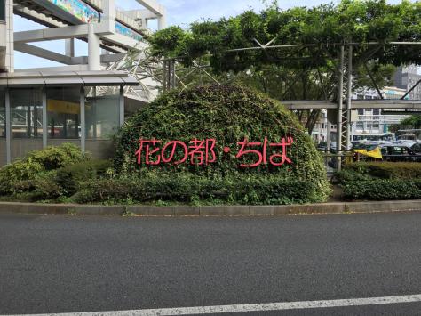 千葉にて指圧治療研修会。_a0112393_09565942.jpg