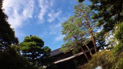 お屋敷_b0288732_18493712.jpg