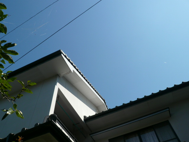 c0043055_1575995.jpg