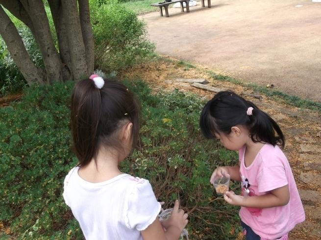 キンモクセイの木の下で_f0334882_17594131.jpg