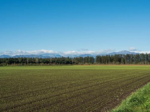 ここ数日の冷え込みで・・日高山脈の高い山(カムエクなど)が冠雪!_f0276498_22425047.jpg