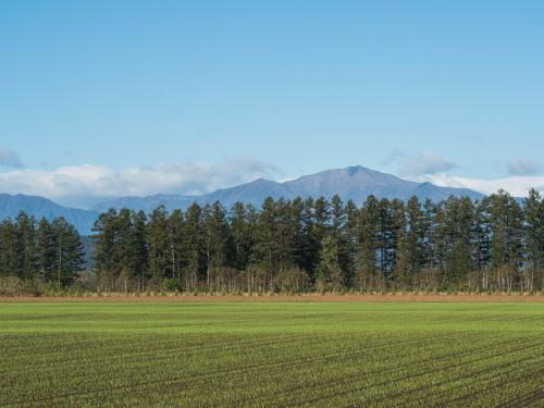 ここ数日の冷え込みで・・日高山脈の高い山(カムエクなど)が冠雪!_f0276498_22431474.jpg