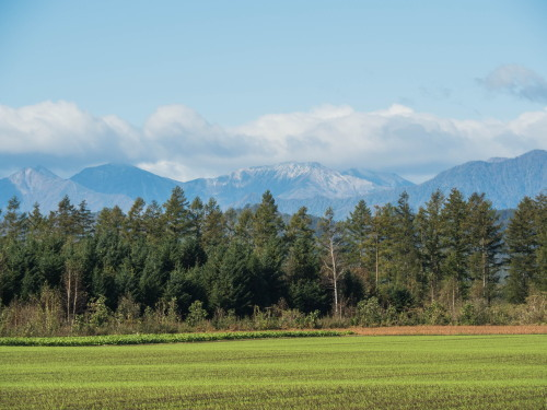 ここ数日の冷え込みで・・日高山脈の高い山(カムエクなど)が冠雪!_f0276498_22433273.jpg