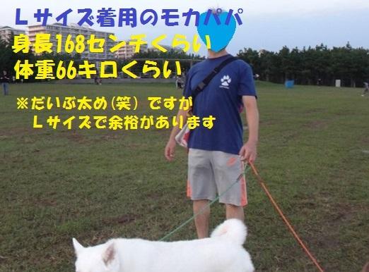 f0121712_22312122.jpg