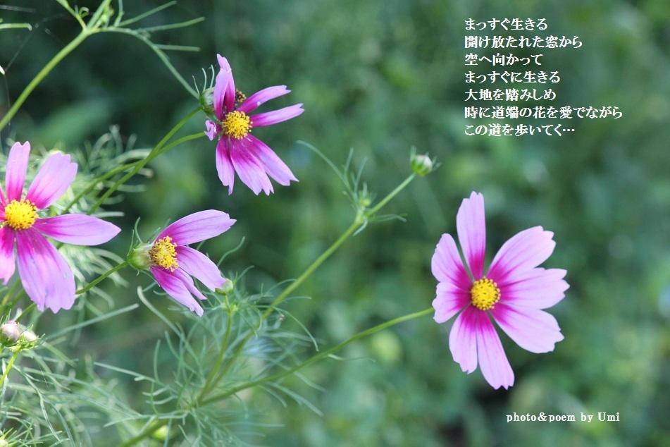 f0351844_23010011.jpg