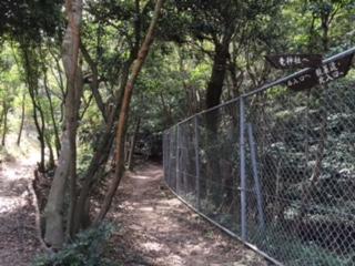 ワークショップ「ぺたぺた歩いて☆色の散歩道」_b0215321_12253635.jpg