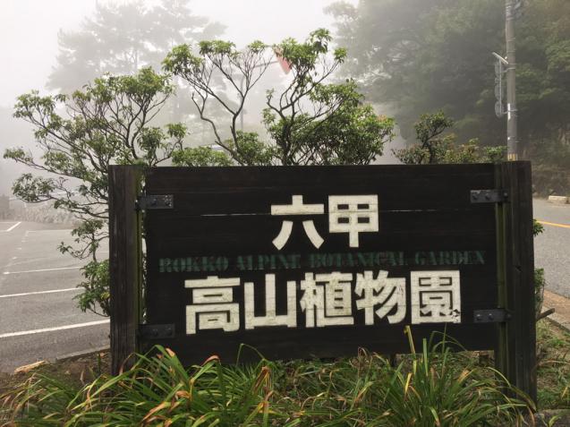六甲高山植物園_d0337937_00050559.jpg